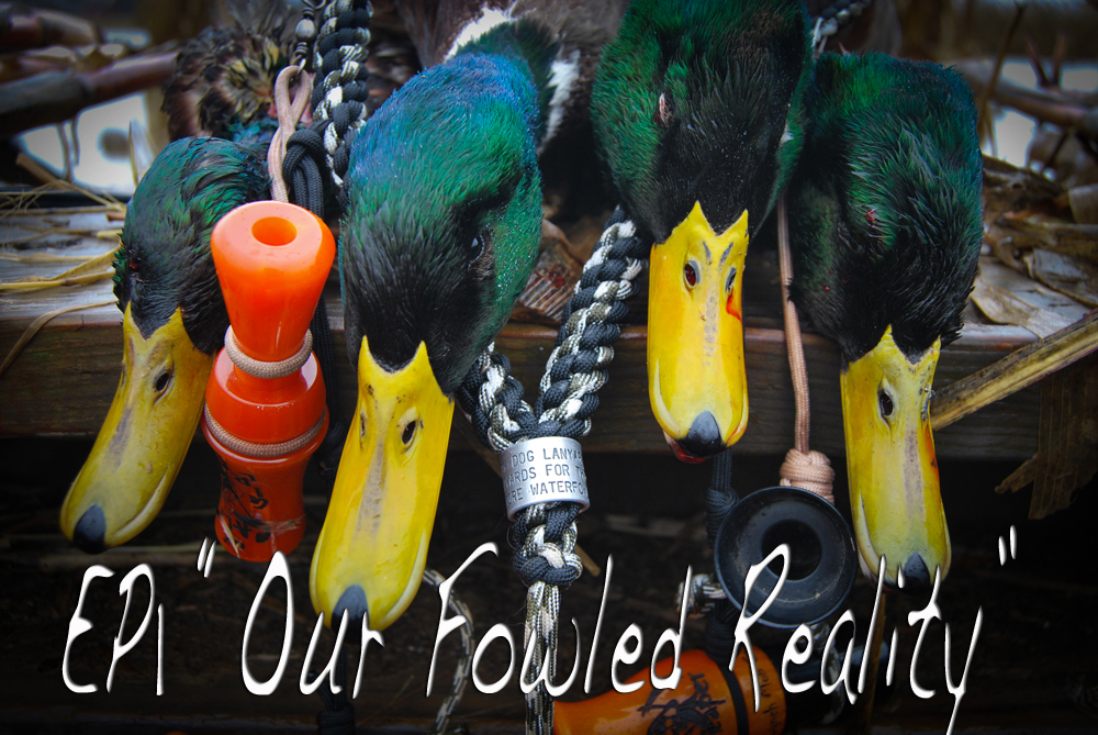 Waterfowl Hunting Videos: Fowled Reality EP1