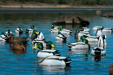 GHG Pro Grade January Edition Mallard Duck Decoys
