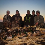 Waterfowl Migration in North Dakota