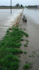 2013 Flooding for Waterfowl