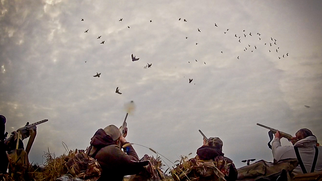Video: Waterfowl Hunting – So You Want To Be A Waterfowl Hunter