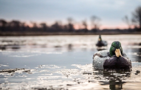 "Realtree: ""The X"" Using the Weather To Your Advantage While Duck Hunting"