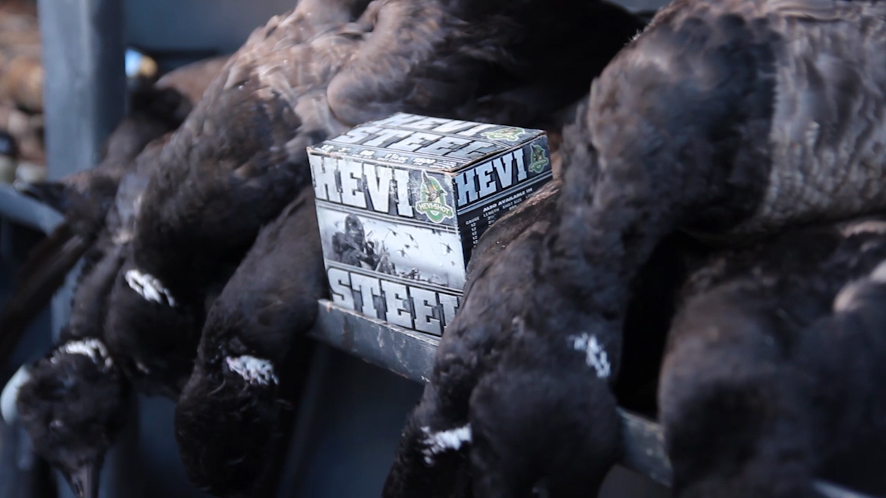 Hevi Steel From The Makers of Hevi Shot