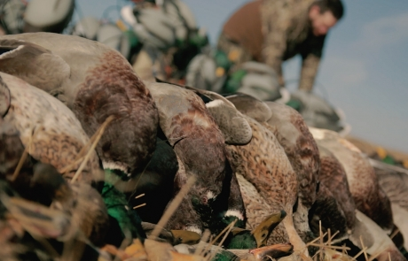 "Realtree: ""The X"" – Alberta Duck Hunting"