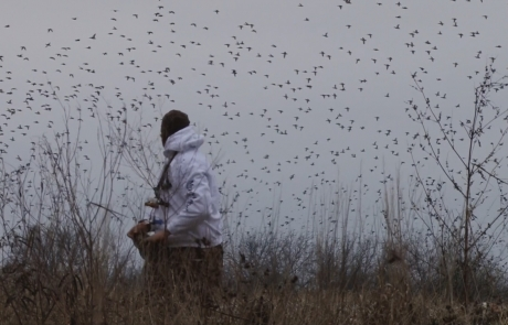 "Realtree: ""The X"" – Stages of the Waterfowl Migration"