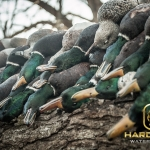 Hard Core Waterfowl TV 4