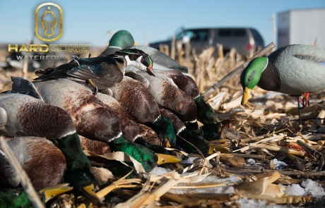 Dry Field Duck Hunting – Hard Core Waterfowl TV Episode 6