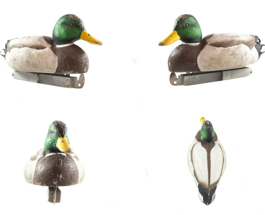 Tanglefree Pro Series Mallard Duck Decoy Review