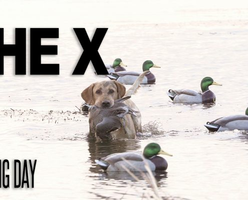 Realtree's The X