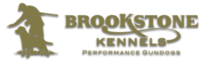 Brookstone Kennels Performance Gundogs
